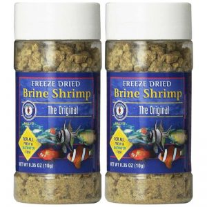 San Francisco Bay Brand ASF71104 Freeze Dried Brine Shrimp for Fresh and Saltwater Fish, 10gm