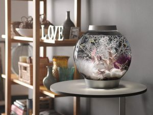 Biorb Aquarium Buyer's Guide and Reviews