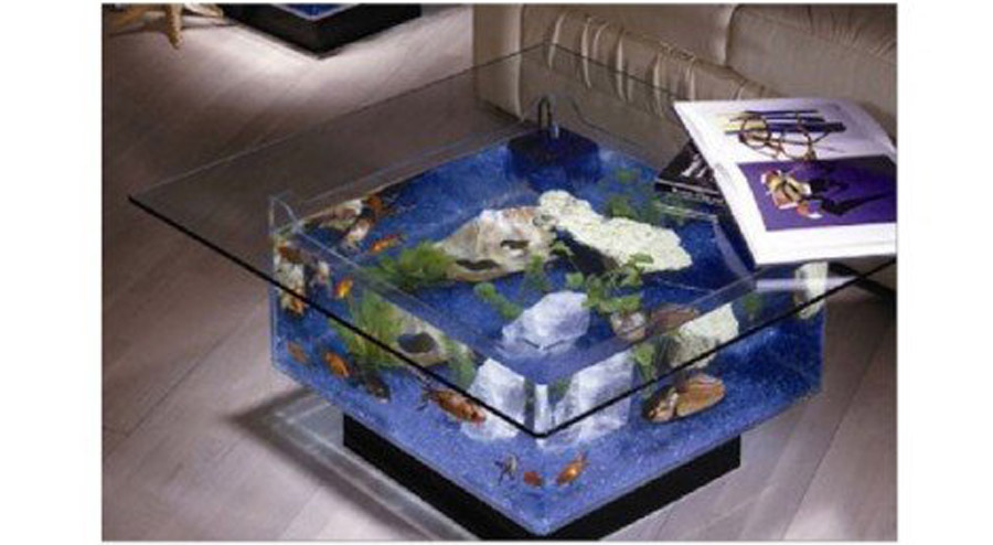 Midwest Tropical Foundation 25 gallon Coffee Table